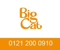 Big Cat Group